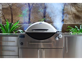 Weber Family Q Built In 3600AU LPG